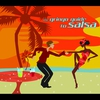 Couverture de l'album The Gringo Guide to Salsa