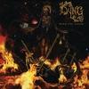Cover of the album Burn the Serum