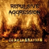 Cover of the album Conflagration