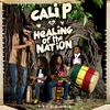 Couverture de l'album Healing of the Nation