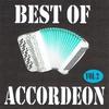 Cover of the album Best of accordéon, Vol. 2