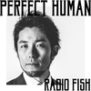 Cover of the album PERFECT HUMAN - Single