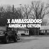 Couverture de l'album American Oxygen - Single