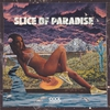 Cover of the album Slice of Paradise - Single
