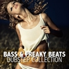 Cover of the album Bass & Freaky Beats - Dubstep Collection