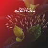 Cover of the album The Root, The Soul