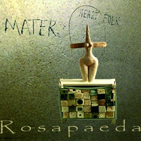 Cover of the track Mater Heart Folk