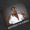 Couverture de l'album Historia Ya Kweli
