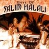 Couverture de l'album Salim Halali Best Of