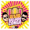Couverture du titre Bailando Conga