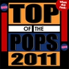 Couverture du titre Top of the Pops 2011 (What the Fuck)