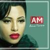 Couverture de l'album Am