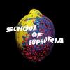 Couverture de l'album School of Euphoria