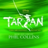 Cover of the album Tarzan - The Broadway Musical (Sountrack from the Musical & Cast Recording)