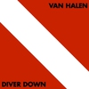 Cover of the album Diver Down