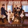 Couverture de l'album Sounds of Kentucky Grass