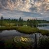 Couverture de l'album Arv