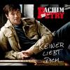 Couverture de l'album Keiner liebt Dich... (Radio Version) - Single