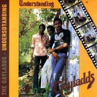 Cover of the track Understanding