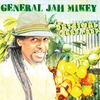 Cover of the album Original Yard Food