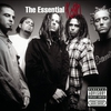 Couverture de l'album The Essential Korn