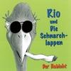 Couverture de l'album Der Habicht