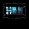 Couverture de l'album The For Carnation