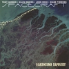 Couverture de l'album Earthtime Tapestry
