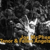 Cover of the album Tenor & Fallen Angels