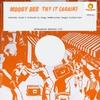 Couverture de l'album Try It (Again) - Single