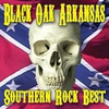 Cover of the album Southern Rock's Best