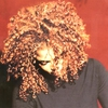 Couverture de l'album The Velvet Rope