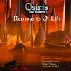 Cover of the album Remnants of Life