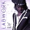 Couverture de l'album Di Genius Presents: Labwork, Vol. 3