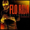 Couverture du titre Wild Ones (feat. Sia)