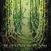Couverture de l'album Trails Out of Gloom