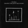 Couverture de l'album Walking the Ghost Back Home