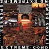 Couverture de l'album Extreme Conditions Demand Extreme Responses (Redux)