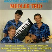 Cover of the track Grootste successen van het Medler trio