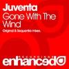 Couverture de l'album Gone With The Wind - Single
