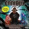 Couverture de l'album Melatonin Magik (Deluxe Edition)