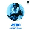 Cover of the album Muito (Dentro da Estrela Azulada)
