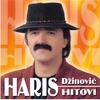 Couverture de l'album Haris Dzinovic Hitovi