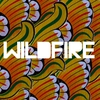 Couverture de l'album Wildfire (feat. Little Dragon) - Single