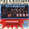 Cover of the album Trip to Mamboland