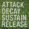 Couverture de l'album Attack Sustain Decay Release (Bonus Track Version)