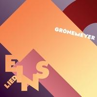 Couverture du titre Lied 1 - Stück vom Himmel - EP