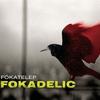 Cover of the album Fokadelic