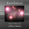 Couverture de l'album Revelation