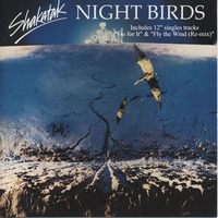 Couverture du titre Night Birds